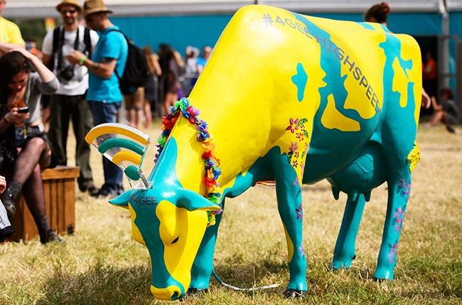 glastonbury-wifi-cow-2014-billboard-biz-650